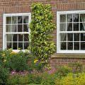 uPVC Windows Hertfordshire